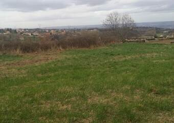 Vente Terrain 1 300m² Peaugres (07340) - photo