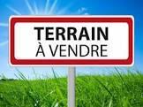 Vente Terrain 981m² Saint-Ferréol-d'Auroure (43330) - photo