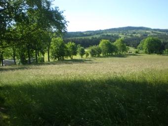 Vente Terrain 2 000m² Saint-Jeures (43200) - photo