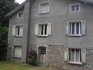 Vente Maison 13 pièces 172m² Saint-Sauveur-en-Rue (42220) - photo