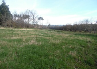 Vente Terrain 2 000m² Saint-Jeures (43200) - photo