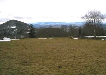 Vente Terrain 1 650m² Le Pertuis (43200) - photo