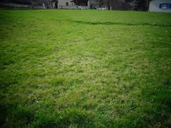 Vente Terrain 1 521m² Coubon (43700) - photo