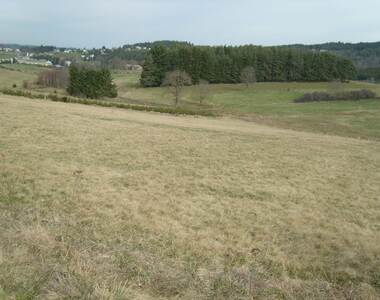 Vente Terrain 1 100m² Tence (43190) - photo