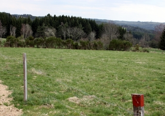 Vente Terrain 1 616m² Monlet (43270) - photo