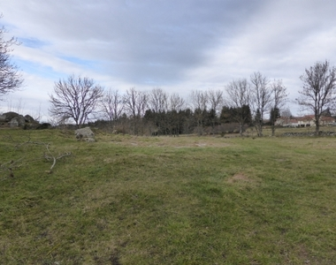 Vente Terrain 5 255m² Montregard - photo