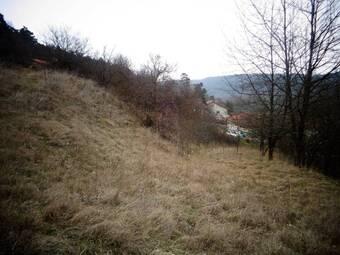 Vente Terrain 2 446m² Sanssac-l'Église (43320) - photo