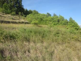 Vente Terrain 2 920m² Brives-Charensac (43700) - photo
