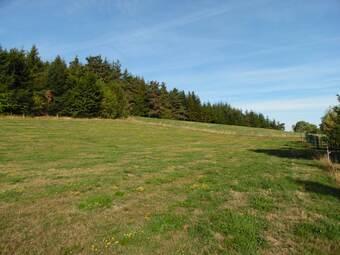 Vente Terrain 3 300m² Tence (43190) - photo