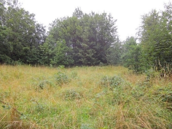Vente Terrain 2 300m² La Séauve-sur-Semène (43140) - photo