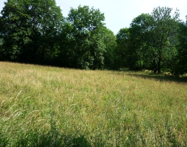 Vente Terrain 3 350m² Queyrières (43260) - photo