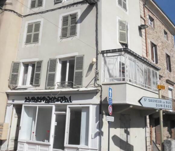 Vente Immeuble 10 pièces 165m² Annonay (07100) - photo