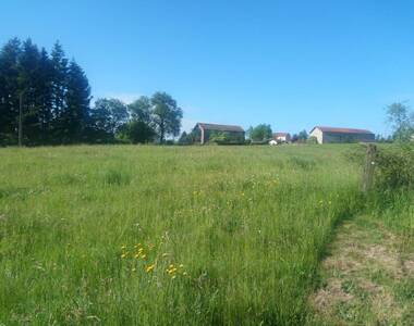 Vente Terrain 6 159m² Grazac (43200) - photo
