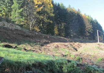 Vente Terrain 2 218m² Dunières (43220) - photo