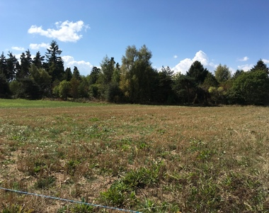 Vente Terrain 2 000m² Saint-Pal-de-Chalencon (43500) - photo