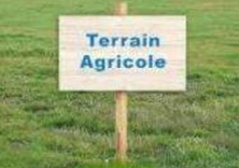 Vente Terrain 3 030m² Monistrol-sur-Loire (43120) - photo