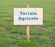 Vente Terrain 3 030m² Monistrol-sur-Loire (43120) - photo
