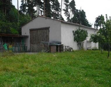 Vente Terrain 1 216m² Saint-Pal-de-Chalencon (43500) - photo