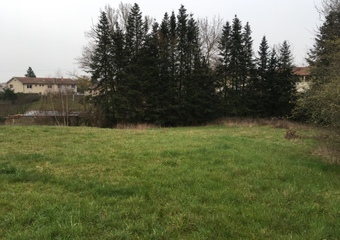 Vente Terrain 1 000m² Montbrison (42600) - photo
