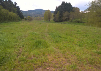 Vente Terrain Beauzac (43590) - photo