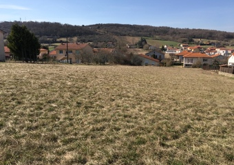 Vente Terrain 3 325m² Brioude (43100) - photo