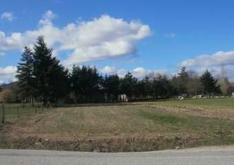 Vente Terrain 1 000m² Entre Bas et Beauzac - photo
