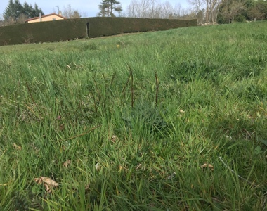 Vente Terrain 1 284m² Monistrol-sur-Loire (43120) - photo