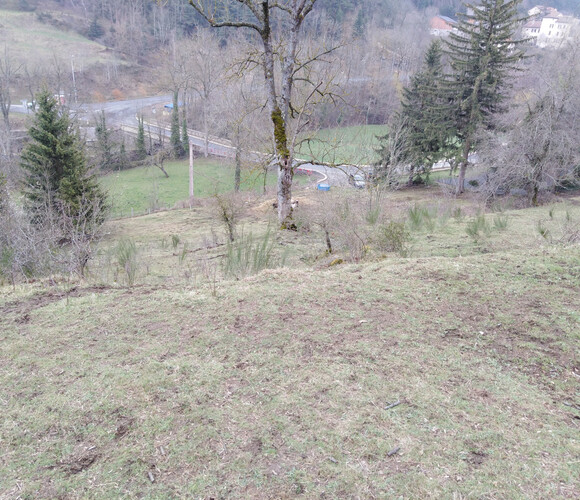 Vente Terrain 6 981m² Yssingeaux (43200) - photo