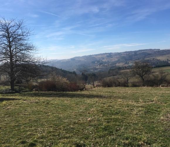 Vente Terrain 1 370m² Rozier-Côtes-d'Aurec (42380) - photo