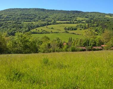 Vente Terrain 5 000m² Saint-Floret (63320) - photo