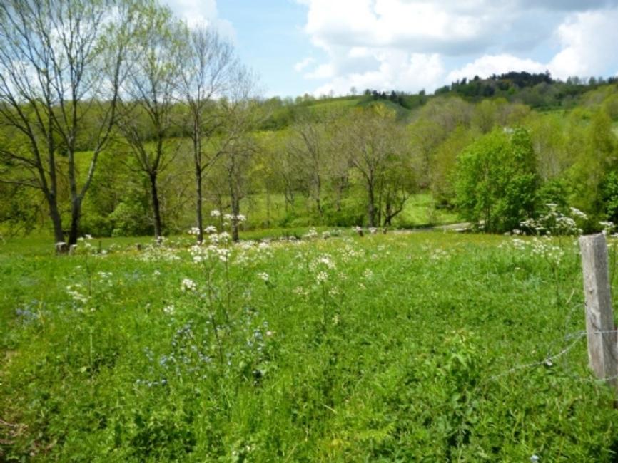 Vente Terrain 1 671m² Queyrières (43260) - photo
