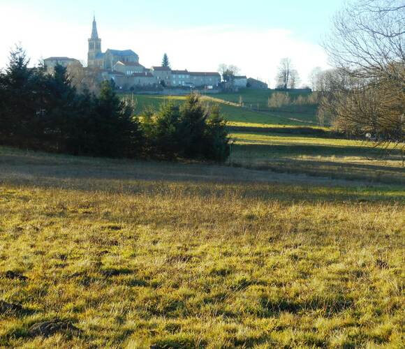 Vente Terrain 3 160m² Lapte (43200) - photo