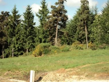 Vente Terrain 1 737m² A PROXIMITE DU BOURG - photo
