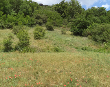Vente Terrain 2 355m² Polignac (43000) - photo