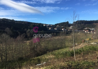 Vente Terrain 1 195m² riotord - Photo 1