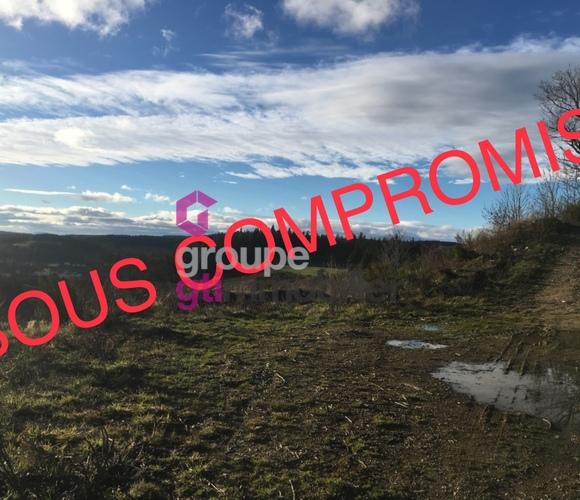 Vente Terrain 2 214m² Riotord (43220) - photo
