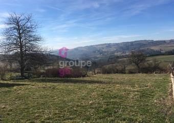 Vente Terrain 1 370m² Rozier-Côtes-d'Aurec (42380) - Photo 1