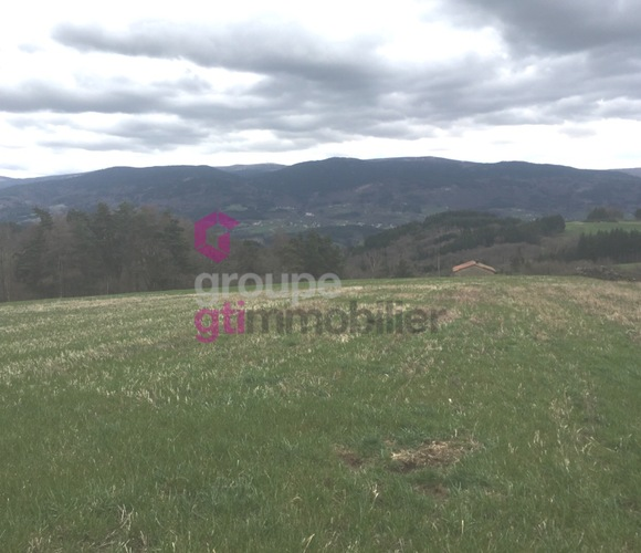 Vente Terrain 2 496m² Bertignat (63480) - photo