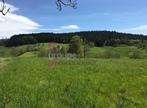 Vente Terrain 2 950m² Riotord (43220) - Photo 3