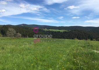 Vente Terrain 1 500m² Riotord (43220) - Photo 1