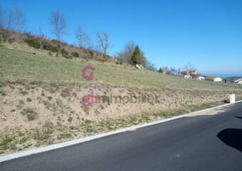Vente Terrain 925m² Yssingeaux (43200) - Photo 1