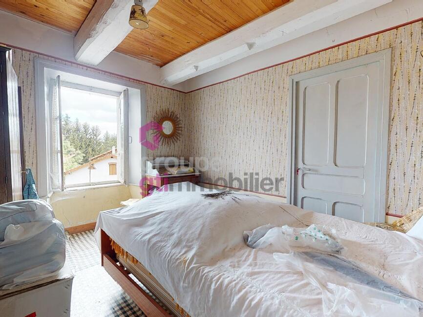 Vente Maison 300m² Arlanc (63220) - photo