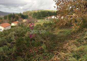 Vente Terrain 14 130m² Saint-Just-Malmont (43240) - Photo 1