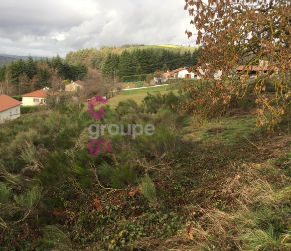 Vente Terrain 14 130m² Saint-Just-Malmont (43240) - photo