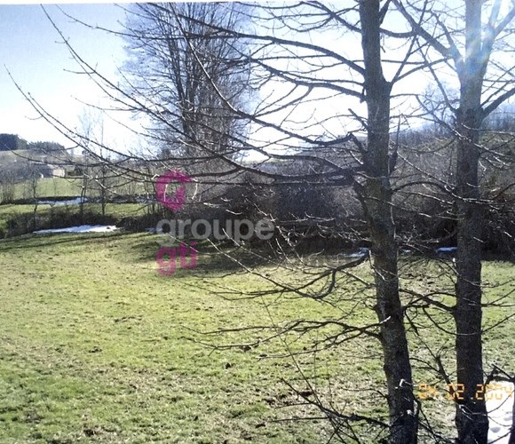 Vente Terrain 10 645m² Tence (43190) - photo
