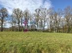 Vente Terrain 1 430m² Néronde-sur-Dore (63120) - Photo 1