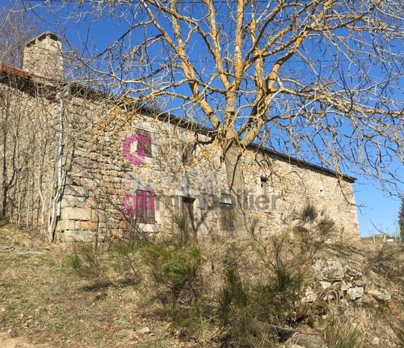 Vente Maison 130m² Saint-André-en-Vivarais (07690) - photo