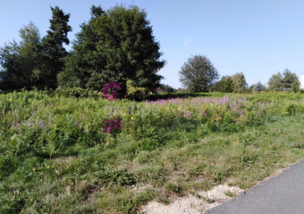 Vente Terrain 1 400m² Lapte (43200) - Photo 1