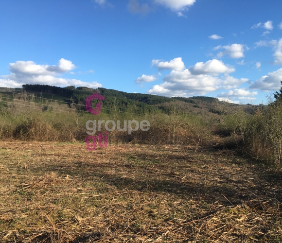 Vente Terrain 1 500m² Paslières (63290) - photo