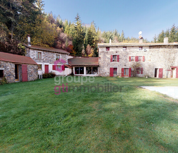 Vente Maison 14 pièces 550m² Allègre (43270) - photo